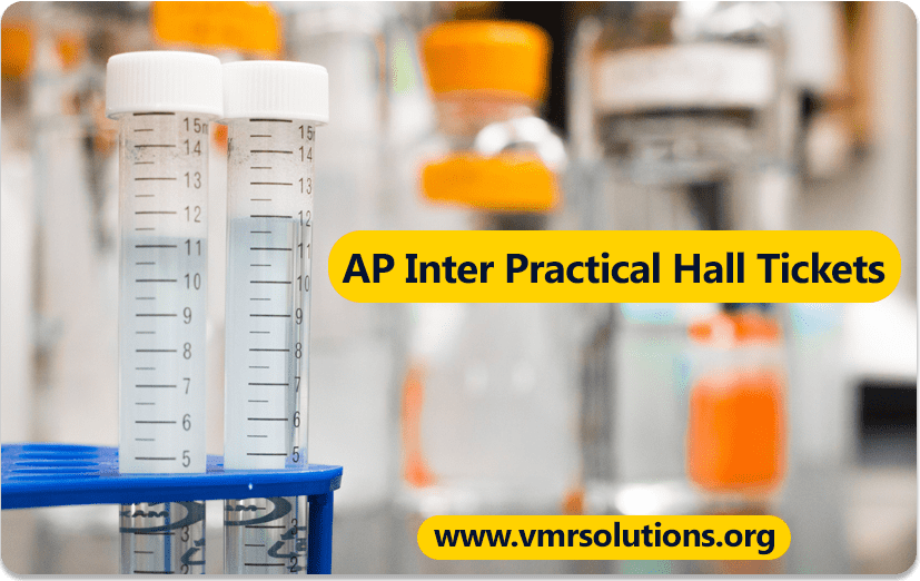AP-Inter-Practical-Hall-Tickets